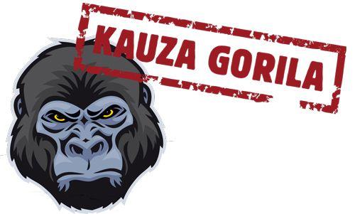 Čo priniesla kauza Gorila vo svete internetu?